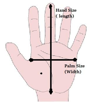 Average Hand Size